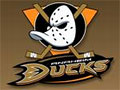 DUCKS TV
