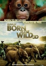 Born to Be Wild (2011)